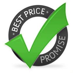 Cena spletnega gostovanja